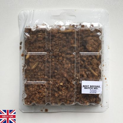 Spikes Insect Crumble Hedgehog Food 100g Back